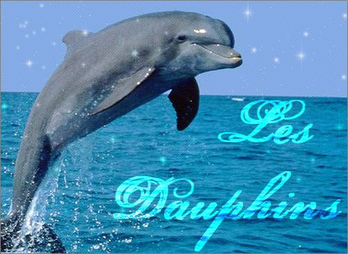 Gif divers page 25 - Images dauphins a imprimer ...
