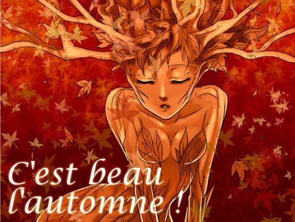c'est beau l'automne