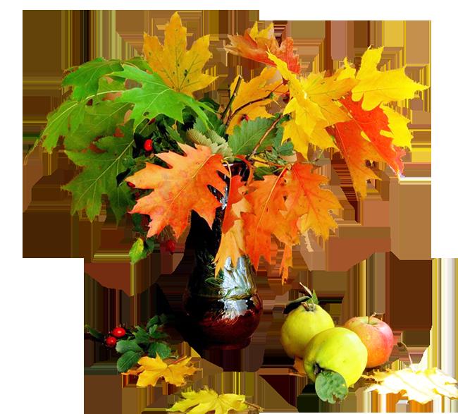 Jolis bouquets de fleurs d 39 automne - Bouquet d automne ...
