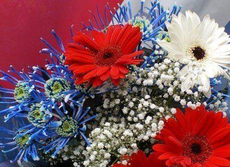 bouquet_bleu_blanc_rouge.jpg