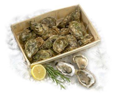 Les huîtres modifiées F2903hus