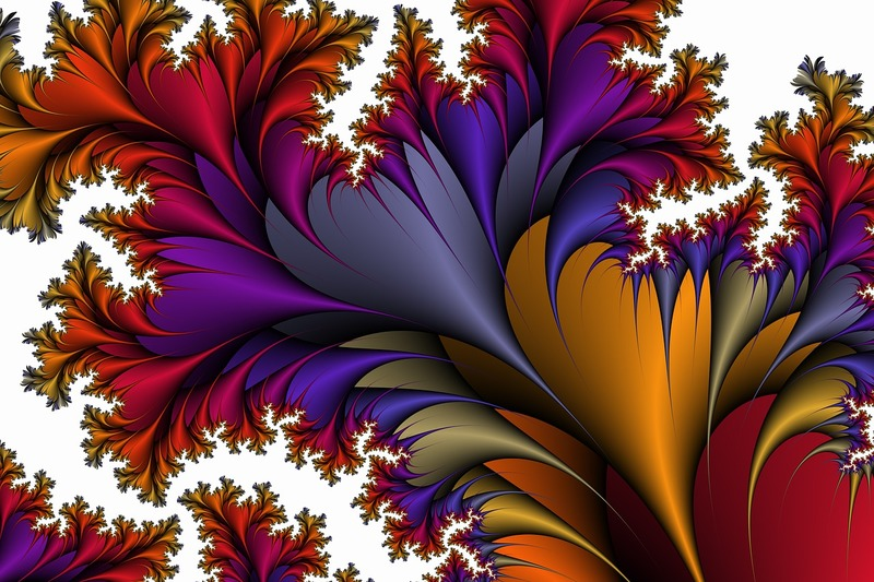 flora-3361957_1280.jpg