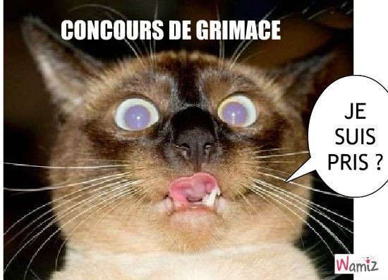 grimace-22548