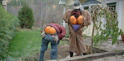 les sorcières arrivent pour halloween (dont images animées)