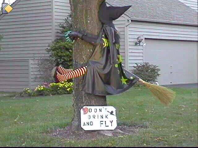 Photos Halloween