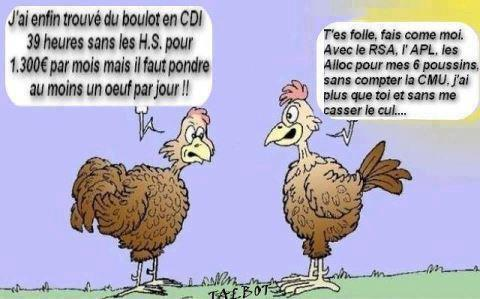 blague animaux  Humour