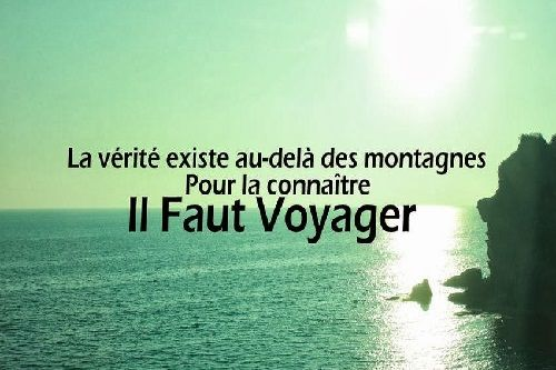 voyager-citation.jpg