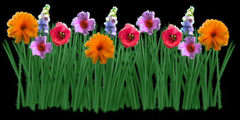 spring-1388930_960_720