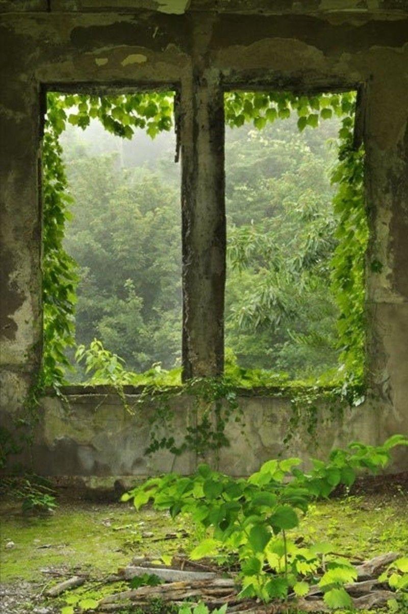 Bon Vendredi Vert